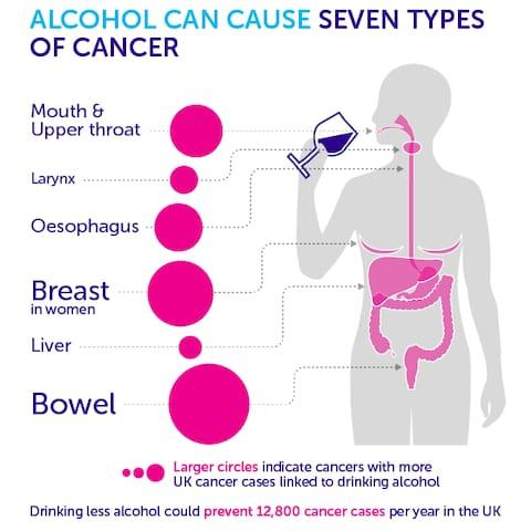 The types of cancer that alcohol can cause  - Credit: Cancer Research UK