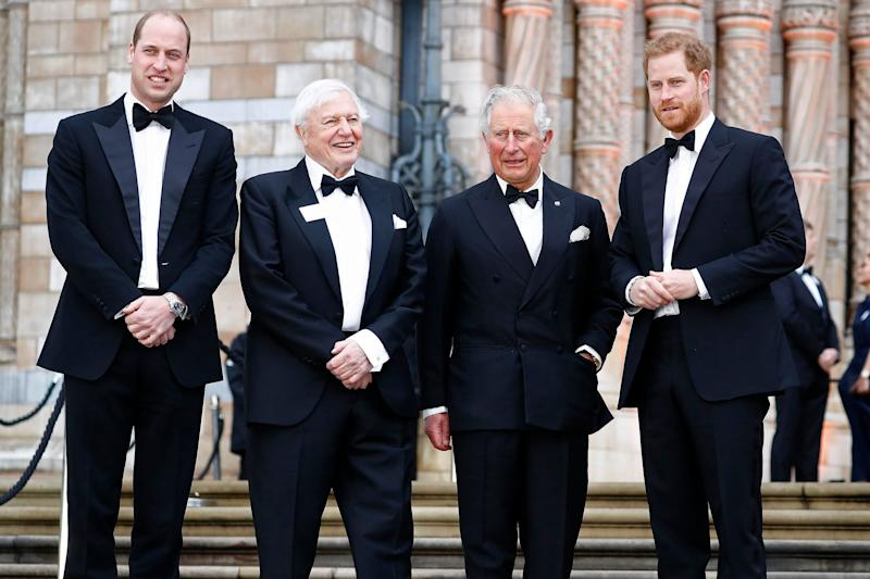 Prince Harry Joins William and Charles for Netflix Premiere
