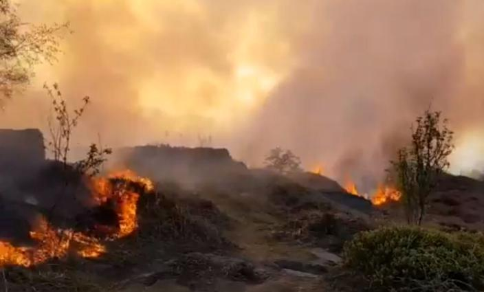 The court heard how emergency services were already stretched tackling two separate seats of wildfires on the tinder dry Ilkley Moor (SWNS)