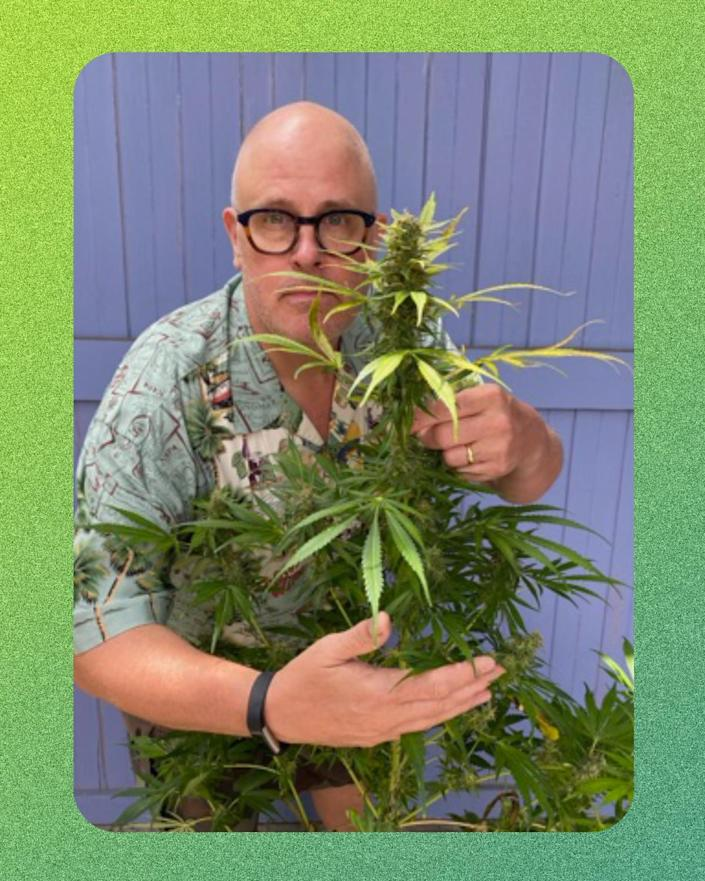 A man standing with his arms around a cannabis plant.