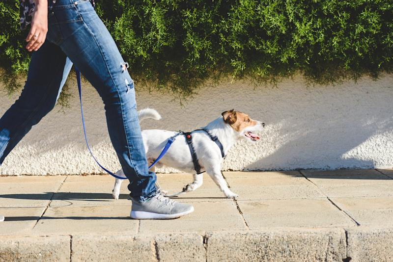 Walking could help increase your life expectancy. (Getty Images)