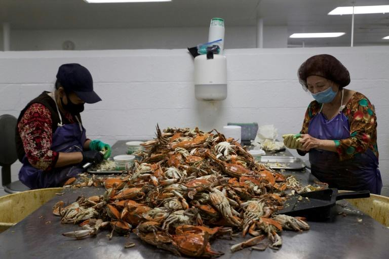 Bay Hundred Seafood is staffed by workers bussed in from a distant Washington suburb