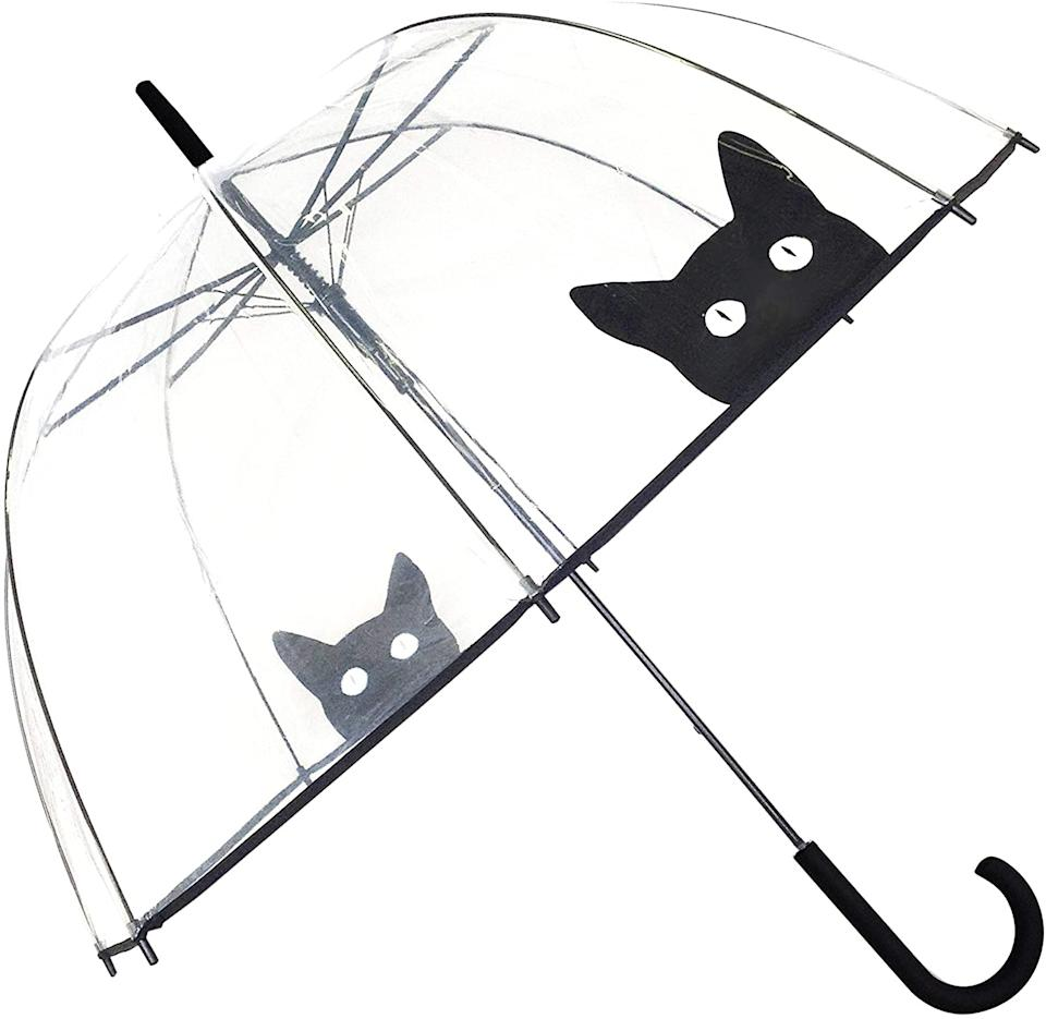 Clear Dome Umbrella with Cats. Image via Amazon.