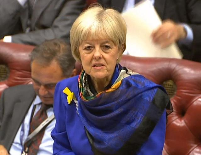 Baroness Hayter of Kentish Town criticised the government's Brexit bill in the House of Lords (PA)