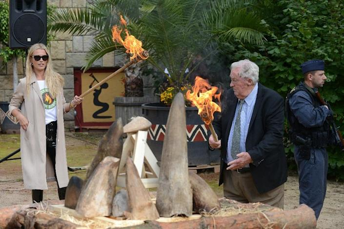 Kenyan conservationist Richard Leakey moves to light the fire at the burning ceremony (AFP Photo/Michal Cizek)