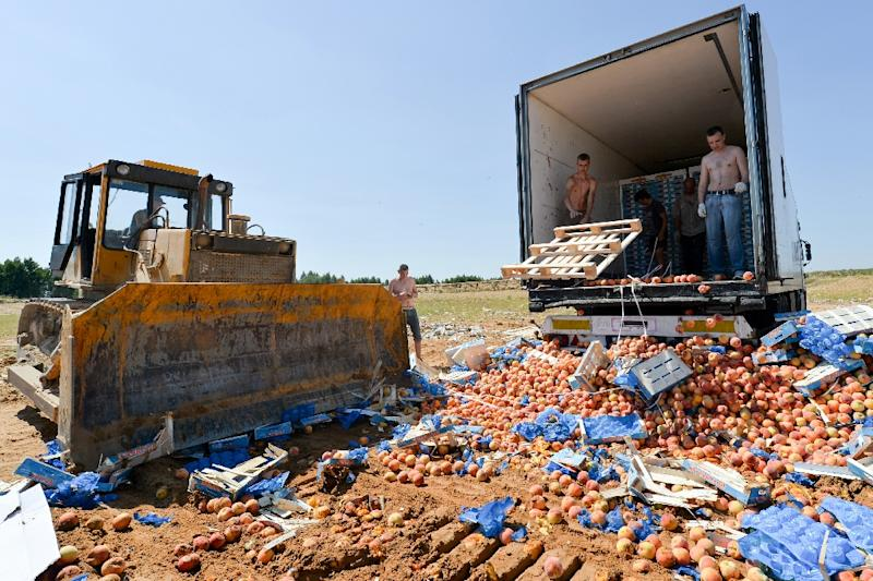 A bulldozer crushes crates of peaches outside the Russian city of Novozybkov, on August 7, 2015