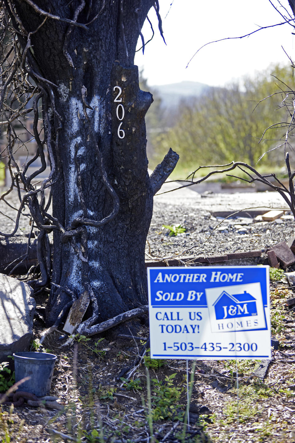 A burned tree is shown on a property in Otis, Ore., on Thursday, May. 13, 2020. The small Oregon coast town is slowly recovering from a devastating fire that destroyed 293 homes. Experts say the 2020 wildfire season in Oregon was a taste of what lies ahead as climate change makes blazes more likely and more destructive even in wetter, cooler climates like the Pacific Northwest. (AP Photo/Craig Mitchelldyer)