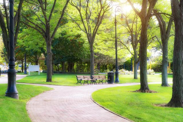 Green spaces may reduce stress, ultimately delaying the menopause. (Getty Images)