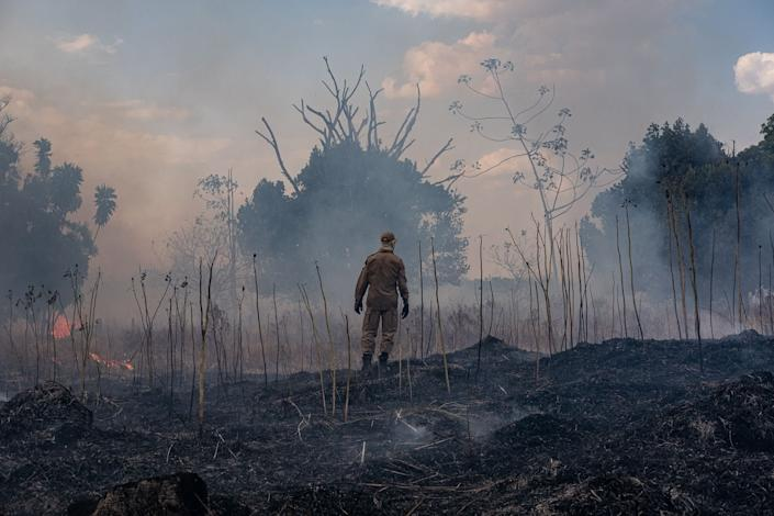 Firefighter combats a fire in the Amazon basin in the municipality Sorriso, Mato Grosso State, Brazil: AFP/Getty