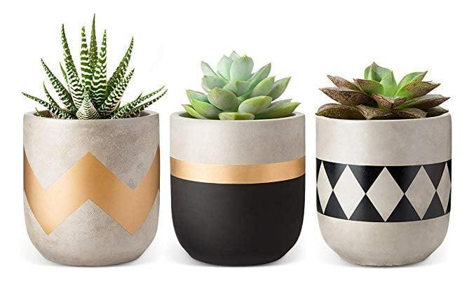 <p>We love the different designs on these <span>Mkono Succulent Planters</span> ($22).</p>