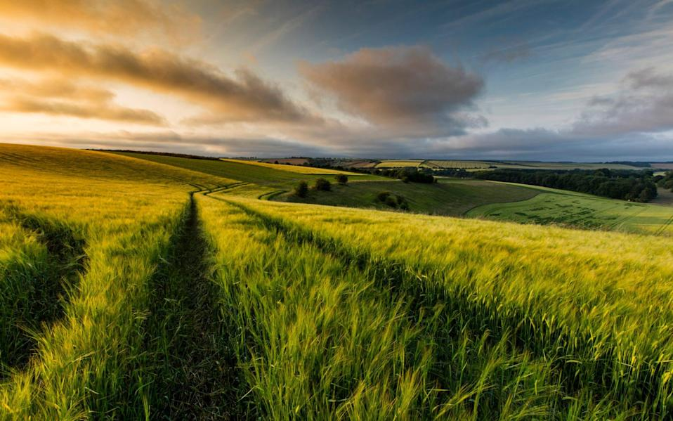 Lincolnshire Wolds - iStock