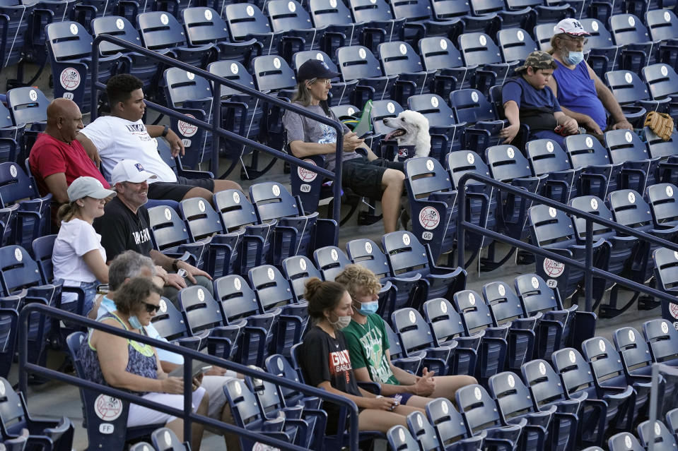 Fans are socially distanced during the first inning of a Low A Southeast League baseball game between the Dunedin Blue Jays and the Tampa Tarpons at George M. Steinbrenner Field Tuesday, May 4, 2021, in Tampa, Fla. Minor league baseball is starting back up after having their season canceled last year by the pandemic. The Tarpons were welcoming dogs at the game. (AP Photo/Chris O'Meara)