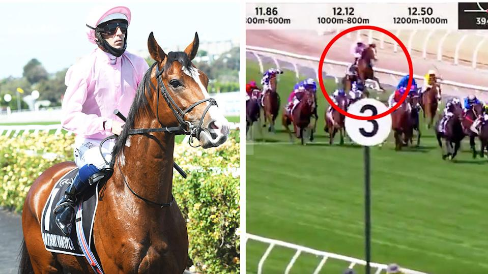 Jockey Hugh Bowman riding Anthony Van Dyck (pictured left) before the Melbourne Cup and the horse pulling up (pictured right) injured.