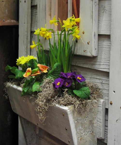 This February 19, 2013 photo shows primroses and daffodils sprucing up a simple window box on an outbuilding display at a recent Northwest Flower and Garden Show in Seattle. Window boxes make practical raised bed gardens -- easy to reach from inside or out. It only takes a few shallow-rooted plants to provide window dressing for even the most rustic buildings. (AP Photo/Dean Fosdick)