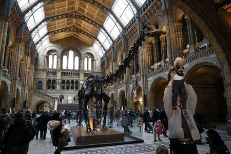 Visitors look a Dippy the diplodocus at the Natural History Museum in London