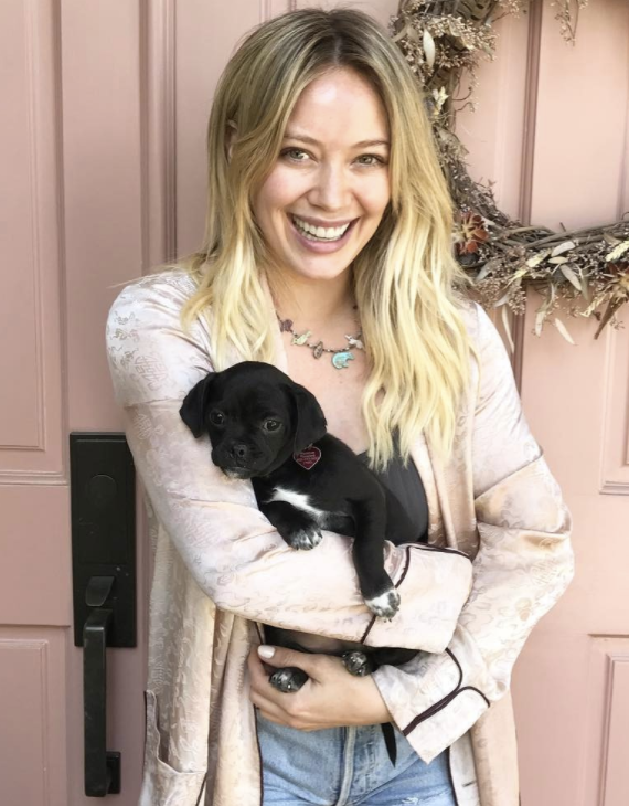 Hilary Duff and her new dog