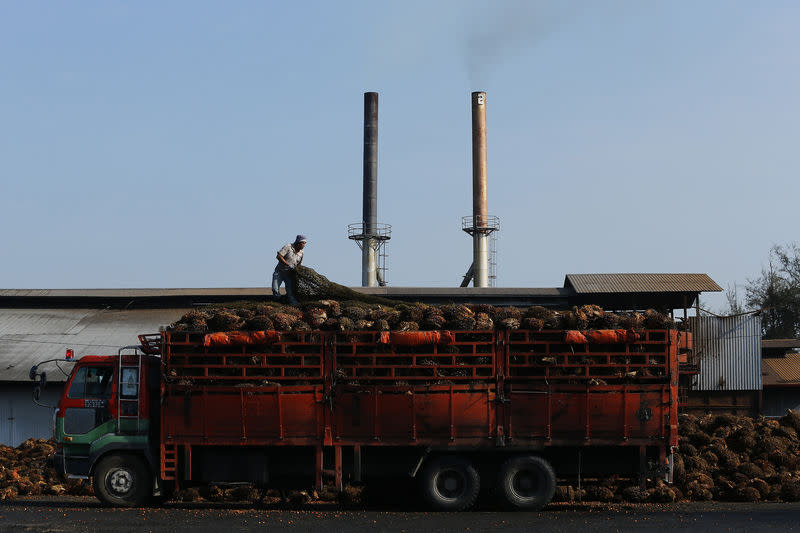 A worker adjusts the netting on a lorry carrying palm oil fruits inside a palm oil factory in Sepang, outside Kuala Lumpur