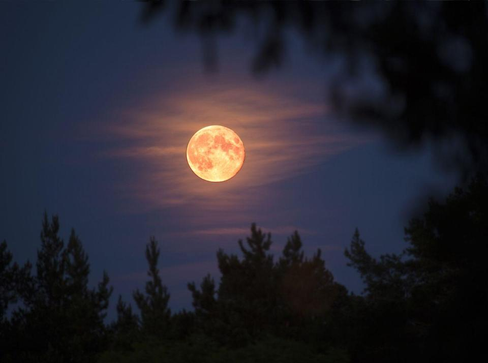 """<p>Answer: A <a href=""""https://bestlifeonline.com/cool-halloween-facts/"""" rel=""""nofollow noopener"""" target=""""_blank"""" data-ylk=""""slk:full moon on Halloween"""" class=""""link rapid-noclick-resp"""">full moon on Halloween</a> only happens about every 19 years or so, according to <a href=""""https://www.farmersalmanac.com/halloween-full-moon-33288"""" rel=""""nofollow noopener"""" target=""""_blank"""" data-ylk=""""slk:The Old Farmer's Almanac"""" class=""""link rapid-noclick-resp"""">The Old Farmer's Almanac</a>. </p>"""