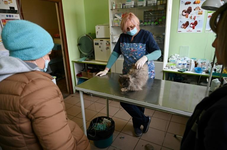 "Veterinarian Galyna Lekunova, 47, complains that a new law mandating the use of Ukrainian in the service industry amounts to ""discrimination"""