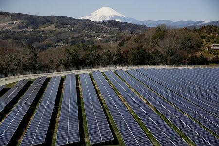FILE PHOTO: Solar panels are seen at a solar power facility as snow covered Mount Fuji is background in Nakai town, Kanagawa prefecture, Japan, March 1, 2016.  REUTERS/Issei Kato/File Photo