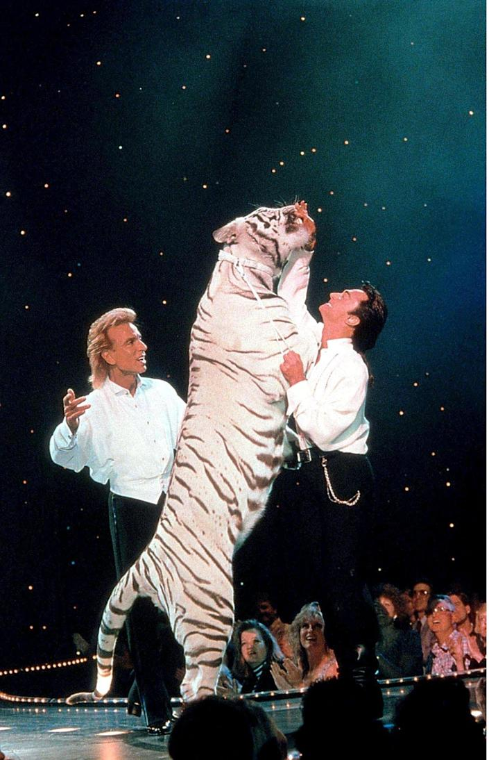 Siegfried and Roy performing with a white tiger in 2002 - Willi Schneider/Shutterstock