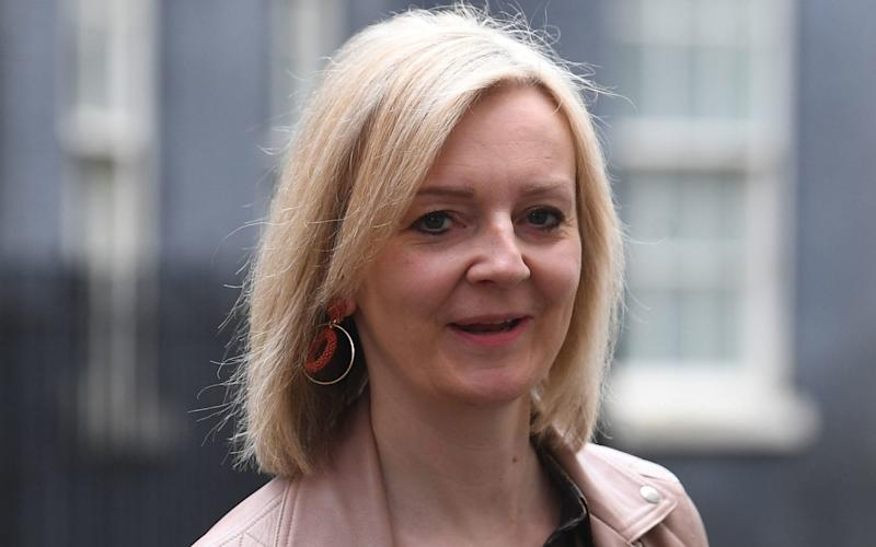 Ms Truss expressed four 'key areas of concerns' about the Government's border plans, which are due to be published on July 13 - Victoria Jones/PA Wire