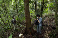 """Biologists Claudio Monteza, right, and Pedro Castillo install a remote camera trap on a tree in the rainforest in San Lorenzo, Panama, Tuesday, April 6, 2021, amid the new coronavirus pandemic. """"This study was not the initial plan,"""" Monteza said. """"But because of the pandemic a lot of us have had to innovate and look for alternatives. (AP Photo/Arnulfo Franco)"""