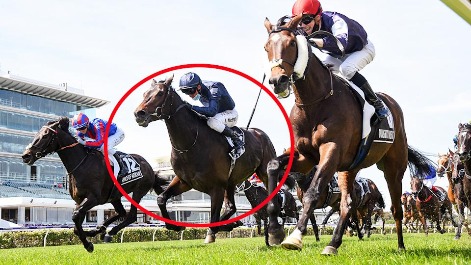 Kerrin McEvoy, pictured here riding Tiger Moth in the Melbourne Cup.