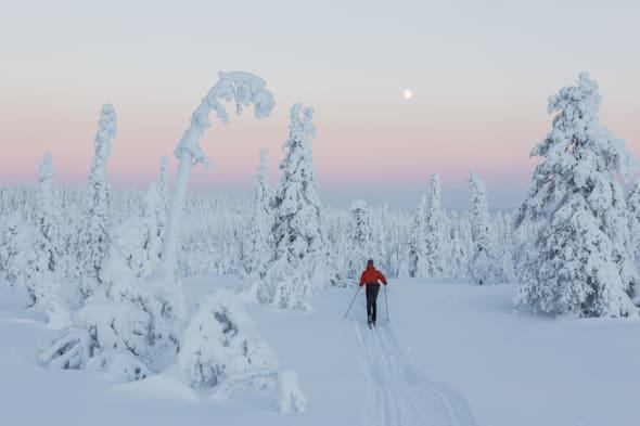 lapland holidays for christmas