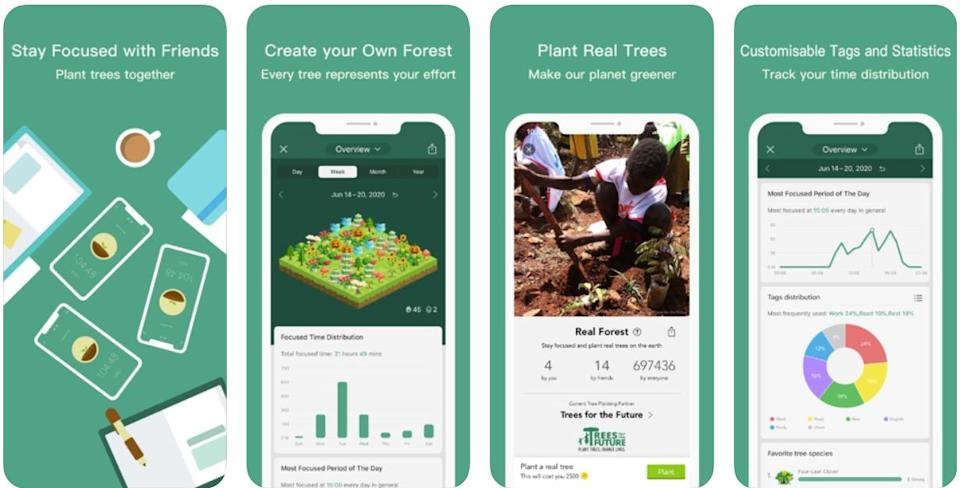 productivity apps - forest