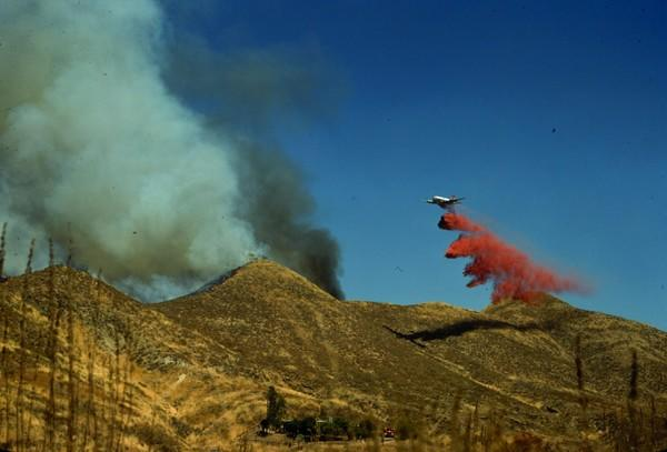 Prescribed fires in central and southern California do not reduce future area burned, as they might in other ecosystems.