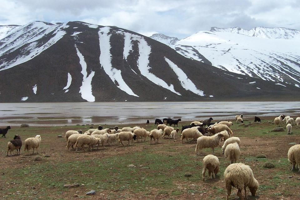"""<span class=""""caption"""">Le lac d'Izourar, dans le Haut Atlas central au Maroc, printemps 2004. </span> <span class=""""attribution""""><span class=""""source"""">Bruno Romagny</span>, <a class=""""link rapid-noclick-resp"""" href=""""http://creativecommons.org/licenses/by-nc-nd/4.0/"""" rel=""""nofollow noopener"""" target=""""_blank"""" data-ylk=""""slk:CC BY-NC-ND"""">CC BY-NC-ND</a></span>"""