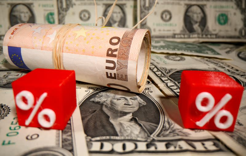 FILE PHOTO: Rolled Euro banknotes and 3D-printed percent models are placed on U.S. dollar banknotes