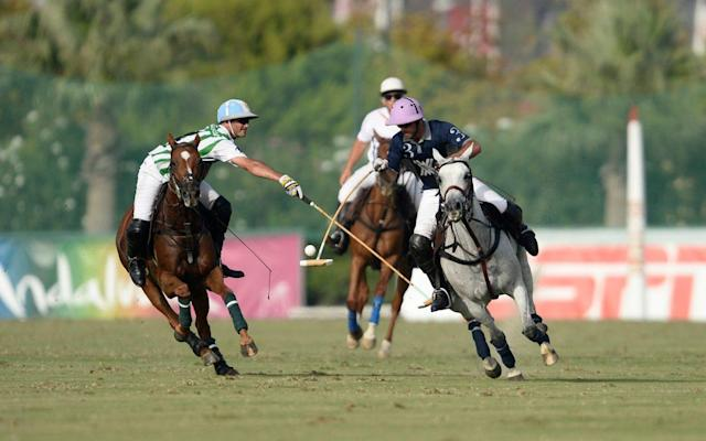 <span>Adolfo Cambiaso, left, and Facundo Pieres - the world's top two players - go head-to-head</span> <span>Credit: Tony Ramirez /imagesofpolo.com </span>