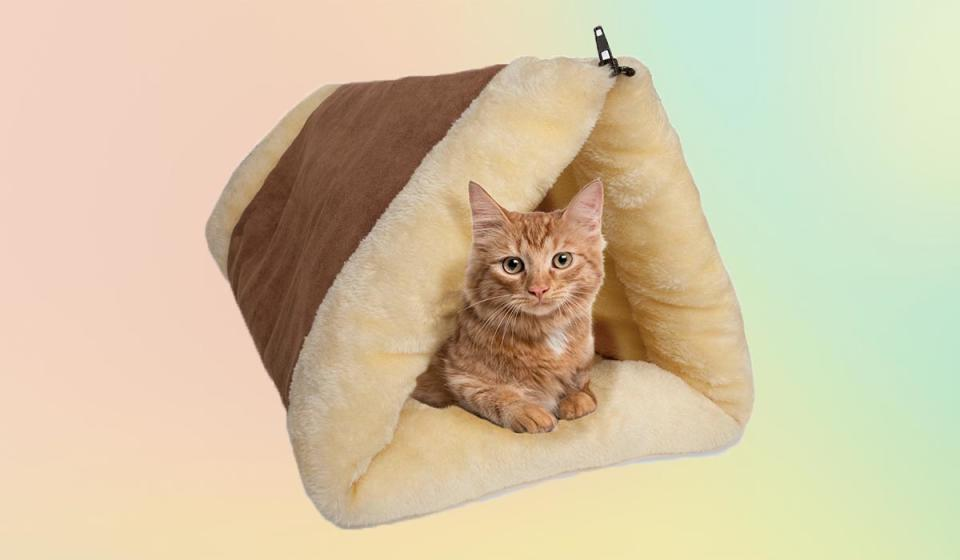 If there's one thing your tuckered-out cat needs, it's more and comfier places to sleep. (That was sarcasm.)(Photo: Walmart)