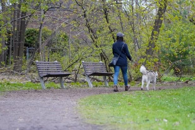 A person walks their dog through a park in Ottawa on May 4, during the COVID-19 pandemic. (Francis Ferland/CBC - image credit)