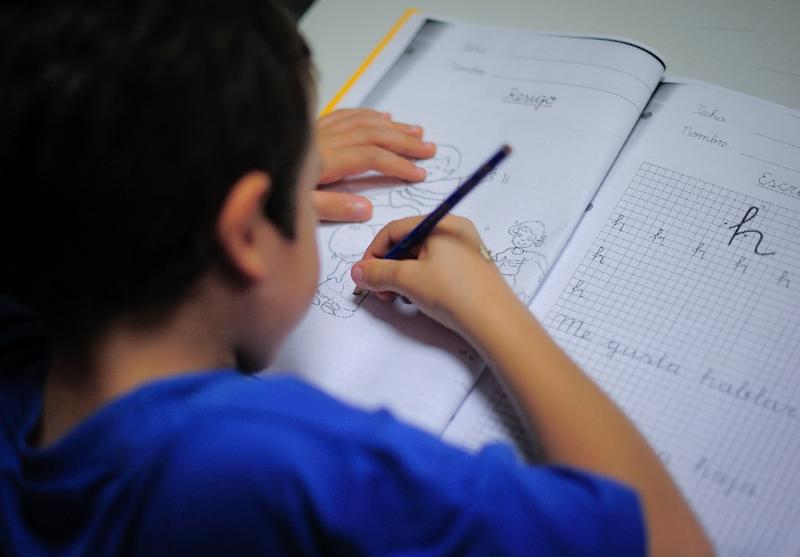 Parents in Spain have decided to go on strike against their offspring's school homework load