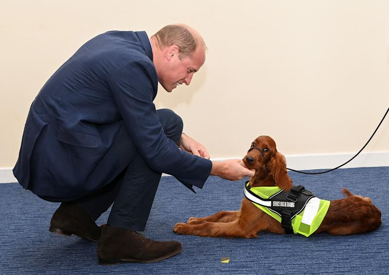 BELFAST, NORTHERN IRELAND - SEPTEMBER 09: Prince William, Duke of Cambridge meets with Chiefs of the PSNI, Fire Service and Ambulance Service, as he attends a PSNI Wellbeing Volunteer Training course to talk about mental health support within the emergency services at PSNI Garnerville on September 09, 2020 in Belfast, Northern Ireland. (Photo by Tim Rooke/Pool/Samir Hussein/WireImage )