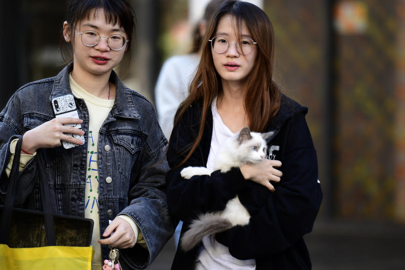 A resident is seen with her cat outside the Mascot Towers building in Mascot, Sydney, Saturday, June 15, 2019. Residents of the high-rise in Mascot, in Sydney's inner-south, have been evacuated as a precaution after cracks were discovered in the building.(AAP Image/Bianca De Marchi)