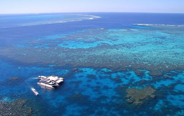 Quicksilver tours taking Be out to the Agincourt Reefs in Port Douglas. Source: Tourism Queensland