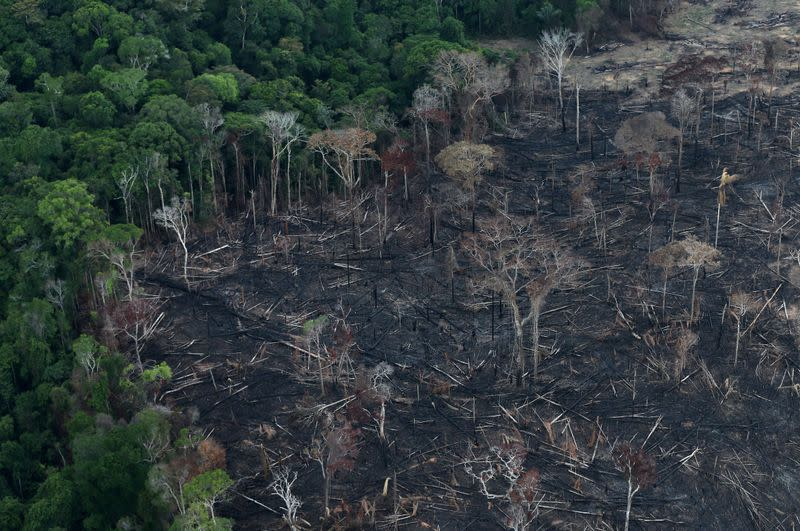 FILE PHOTO: An aerial view of a tract of Amazon jungle after it was cleared by farmers in Itaituba