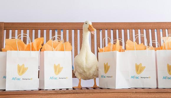 Aflac duck stand between Aflac shopping bags.