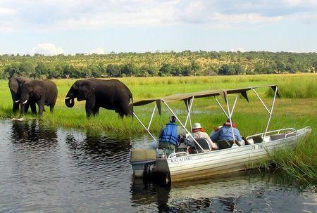 Foreign tourists in safari riverboats observe elephants along the Chobe river bank near Botswana's northern border where Zimbabwe, Zambia and Namibia meet, March 4, 2005. REUTERS/Peter Apps/File Photo