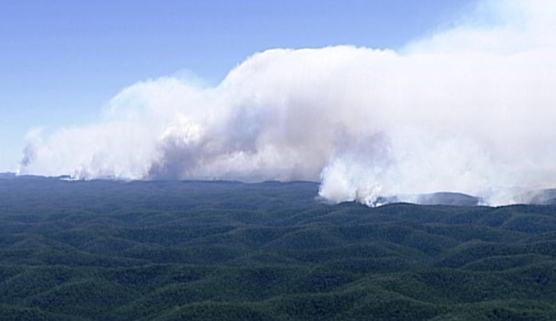 In this image made from video, huge plumes of smoke billow from wildfires in forest in Wollemi, New South Wales state, Australia, Wednesday, Nov. 13, 2019. More than 50 homes were damaged or destroyed and 13 firefighters were injured overnight by catastrophic wildfires across Australia's most populous state before the emergency subsided on Wednesday, officials said. (Australian Broadcasting Corporation via AP)