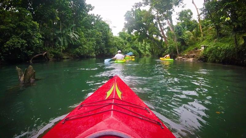 You'll feel like you're on the set of Jurassic Park kayaking down this secluded river. Photo: Supplied