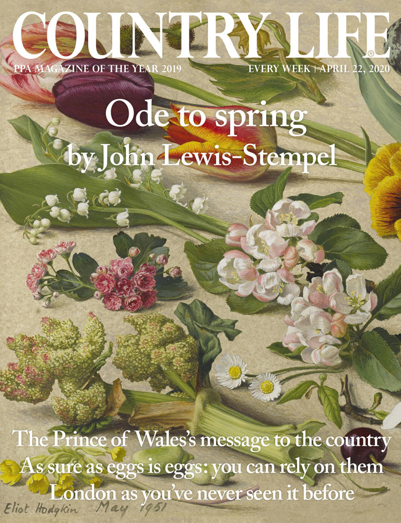 The Prince of Wales has written a message in Country Life