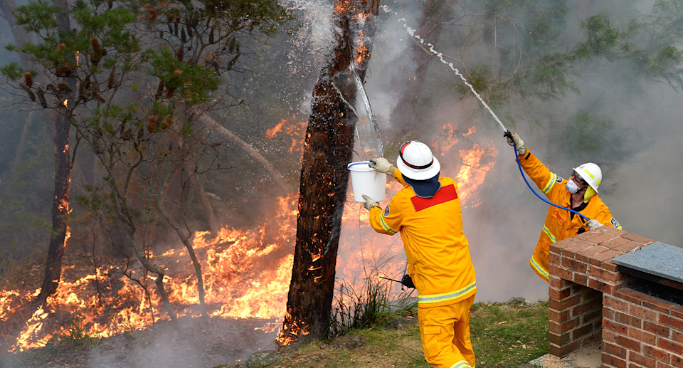 Bushfires in the Blue Mountains were studied by the researchers over a period of two years. Source: Getty