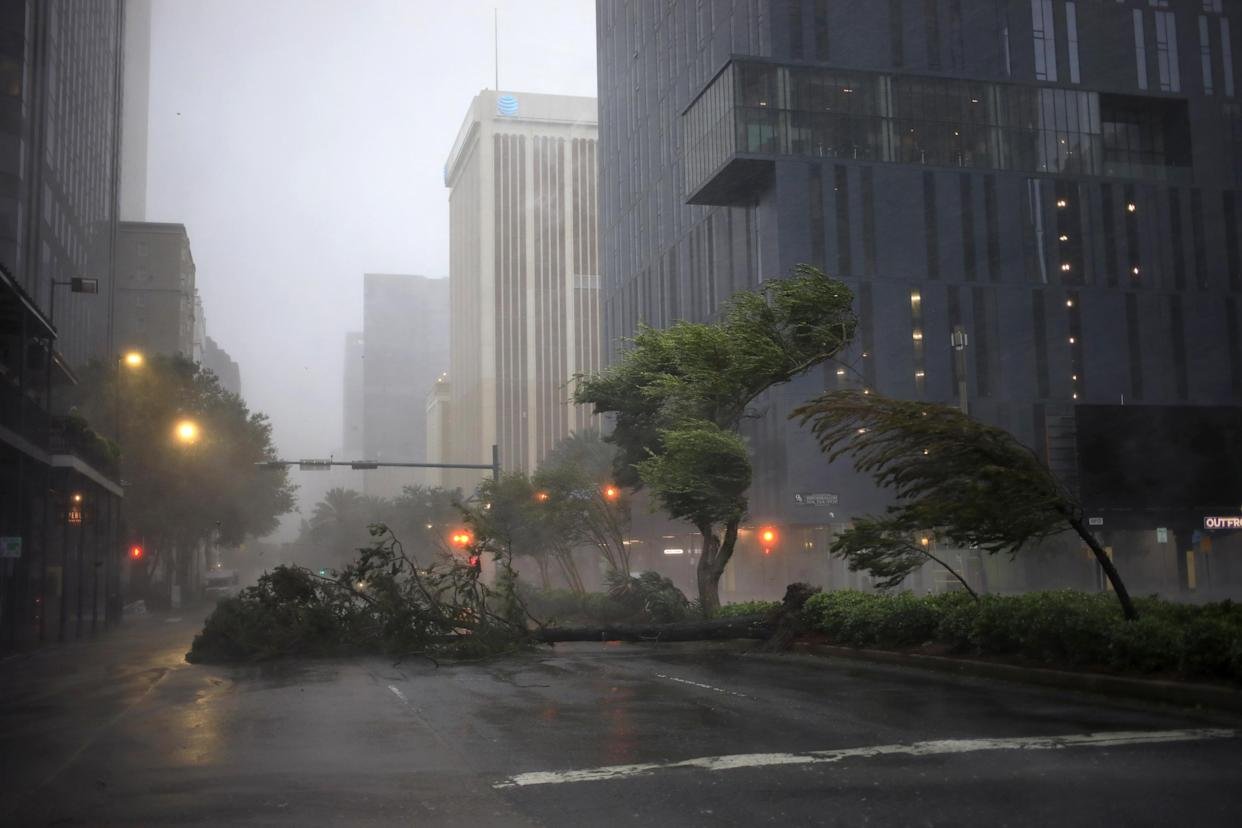 Trees and bushes bow against the wind and rain on the median strip of a road beneath large buildings.