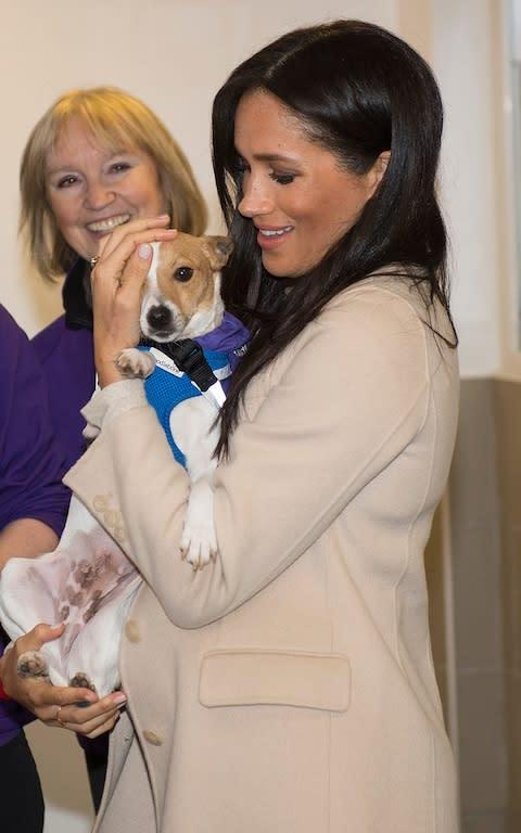 <span>The Duchess visiting Mayhew, an animal charity she is a patron of</span>