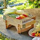 <p>If you don't have a grill at home, this <span>Eco-Friendly Instant Grill</span> ($15) is a good option.</p>